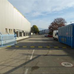 Location Local d'activités Saint-Martin-le-Vinoux 300 m²