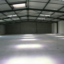 Location Local d'activités Muret 315 m²