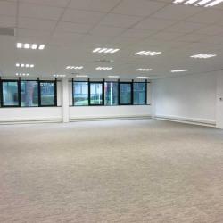 Location Bureau Sophia Antipolis 230 m²
