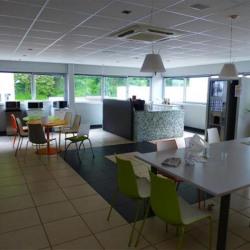 Location Local d'activités Fontaine 615 m²