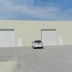 Location Local d'activités Frontonas 157 m²