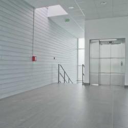 Vente Local d'activités Serris 133 m²