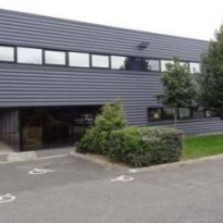 Vente Local d'activités Fresnes (94260)