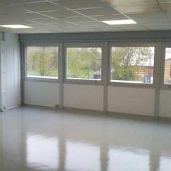 Location Local d'activités Villeneuve-la-Garenne 600 m²