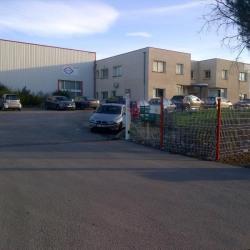 Location Local d'activités Vendargues 370 m²