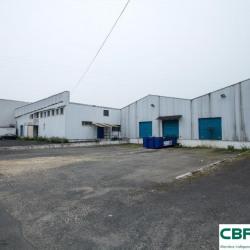 Location Local d'activités Terrasson-Lavilledieu 5800 m²