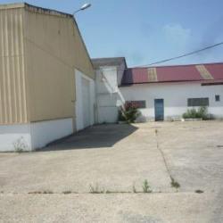Location Local d'activités Montry 944 m²