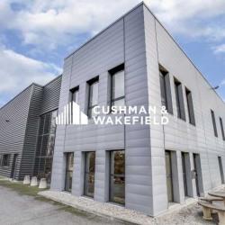 Vente Local d'activités Vaulx-en-Velin 3300 m²