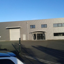 Location Entrepôt Verson 574 m²