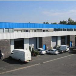 Location Bureau Sartrouville 524 m²