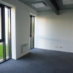 Location Local d'activités Brie-Comte-Robert 62 m²