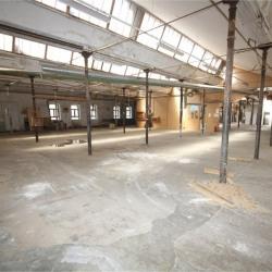 Vente Entrepôt La Bresse 1542 m²