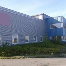 Location Local d'activités Montivilliers 343 m²