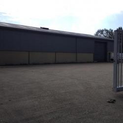 Location Entrepôt Rogerville 600 m²