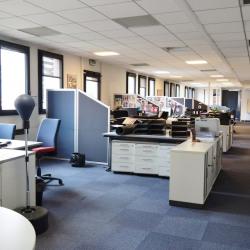 Location Bureau Lyon 3ème 460 m²