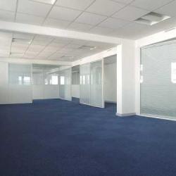 Location Bureau Suresnes 122 m²