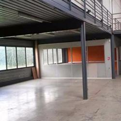 Location Local d'activités Toulouse 430 m²