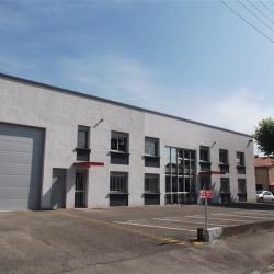 Location Local d'activités Villeurbanne 908 m²