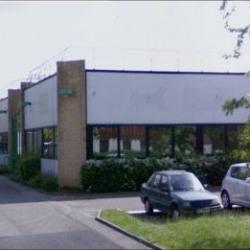 Vente Local d'activités Villebon-sur-Yvette 325 m²