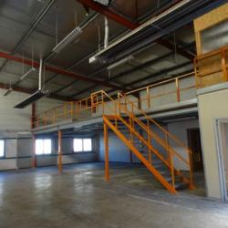 Location Local d'activités Saint-Martin-le-Vinoux 320 m²