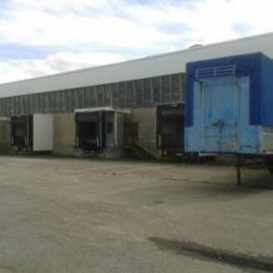 Vente Entrepôt Carquefou 5000 m²