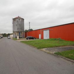 Location Local d'activités Lacroix-Saint-Ouen 1120 m²