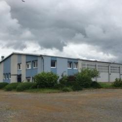 Vente Local d'activités Drulingen (67320)