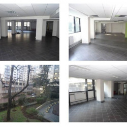 Location Bureau Paris 15ème 772 m²