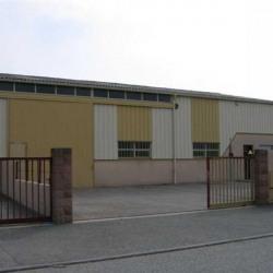 Location Local d'activités Beynost 430 m²