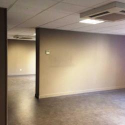 Location Bureau Lyon 3ème 255 m²