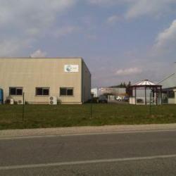 Location Local d'activités Wittelsheim 675 m²