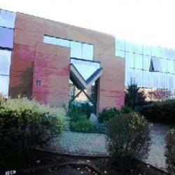 Vente Bureau Oberhausbergen 150 m²