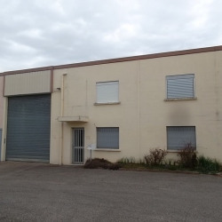 Location Local commercial Chassieu 350 m²