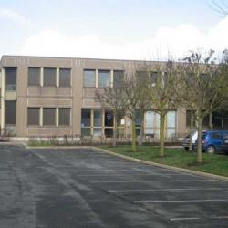 Location Bureau Le Coudray-Montceaux 540 m²