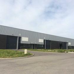 Location Entrepôt Mornant 963 m²