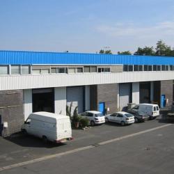 Location Local d'activités Sartrouville 419 m²