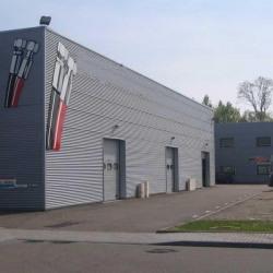 Location Local d'activités Ostwald 571 m²