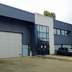 Location Local d'activités Limonest 771 m²