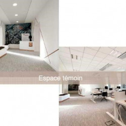 Location Bureau Paris 8ème 380 m²