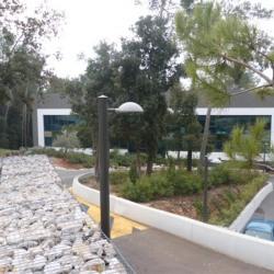 Location Bureau Sophia Antipolis 160 m²