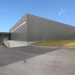 Location Local d'activités Le Rheu 1500 m²