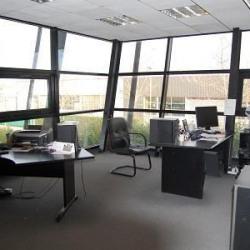 Vente Local d'activités Moussy-le-Neuf 750 m²