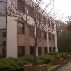 Location Bureau Jouy-en-Josas 85 m²