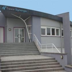 Vente Local d'activités Soufflenheim 451 m²