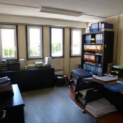 Location Local d'activités Saint-Martin-d'Hères 362 m²