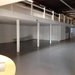 Location Local d'activités Valence 450 m²