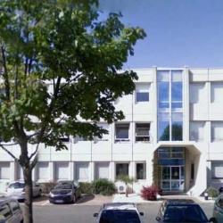 Location Local d'activités Montigny-le-Bretonneux (78180)