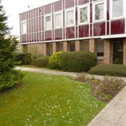 Vente Local d'activités Chelles 2598 m²