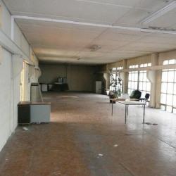 Location Local d'activités Grenoble 1117 m²