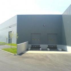 Location Local d'activités Combs-la-Ville 2919 m²